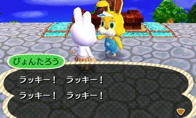 bunnyday-zipper