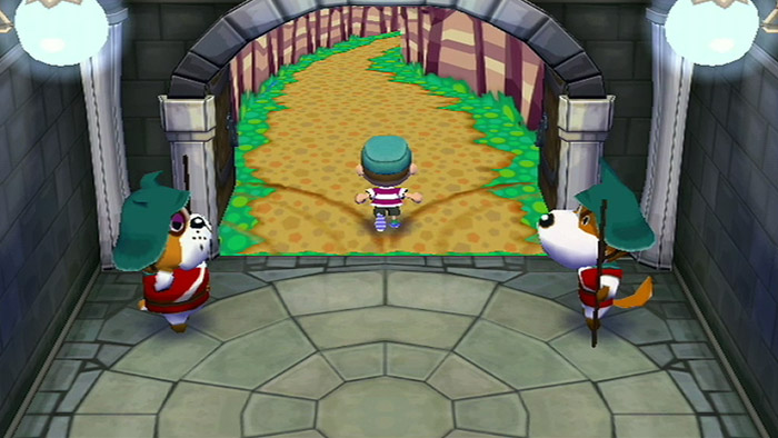 Image result for animal crossing ds wii