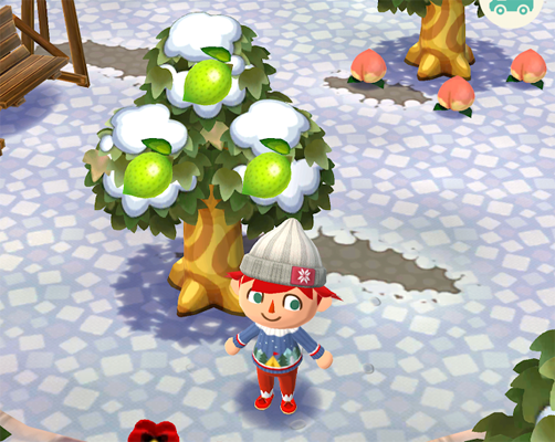 Fruit Pocket Camp Guide How To Get Grapes Lemons Lychee Apples Pears