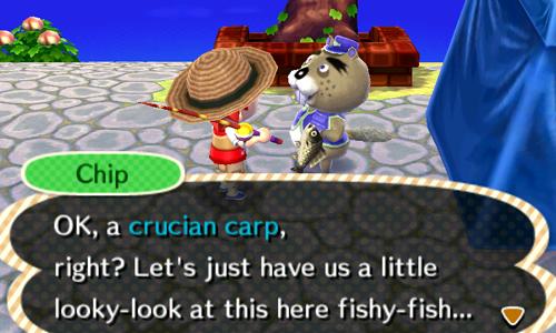 Турнир по рыбалке: даты, призы от рыбы, советы, стратегия