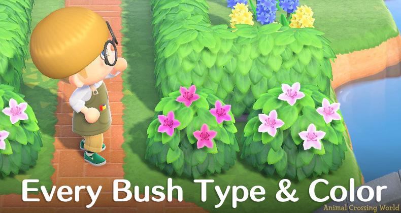 Bush Types Colors List Blooming Season Dates In Animal Crossing