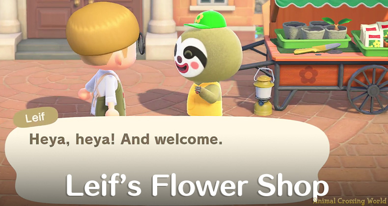 Leif S Flower Shop How To Find Him What He Sells In Animal