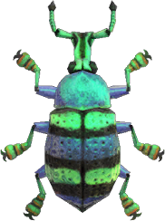Animal Crossing: New Horizons Blue Weevil Beetle Bug
