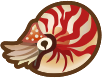 Animal Crossing: New Horizons Chambered Nautilus Sea Creature