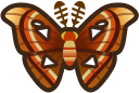Animal Crossing: New Horizons Atlas Moth Bug