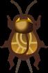 Animal Crossing: New Horizons Cricket Bug