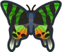 Animal Crossing: New Horizons Madagascan Sunset Moth Bug