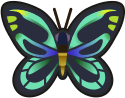 Animal Crossing: New Horizons Queen Alexandra'S Birdwing Bug