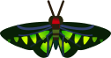 Animal Crossing: New Horizons Rajah Brooke's Birdwing Bug