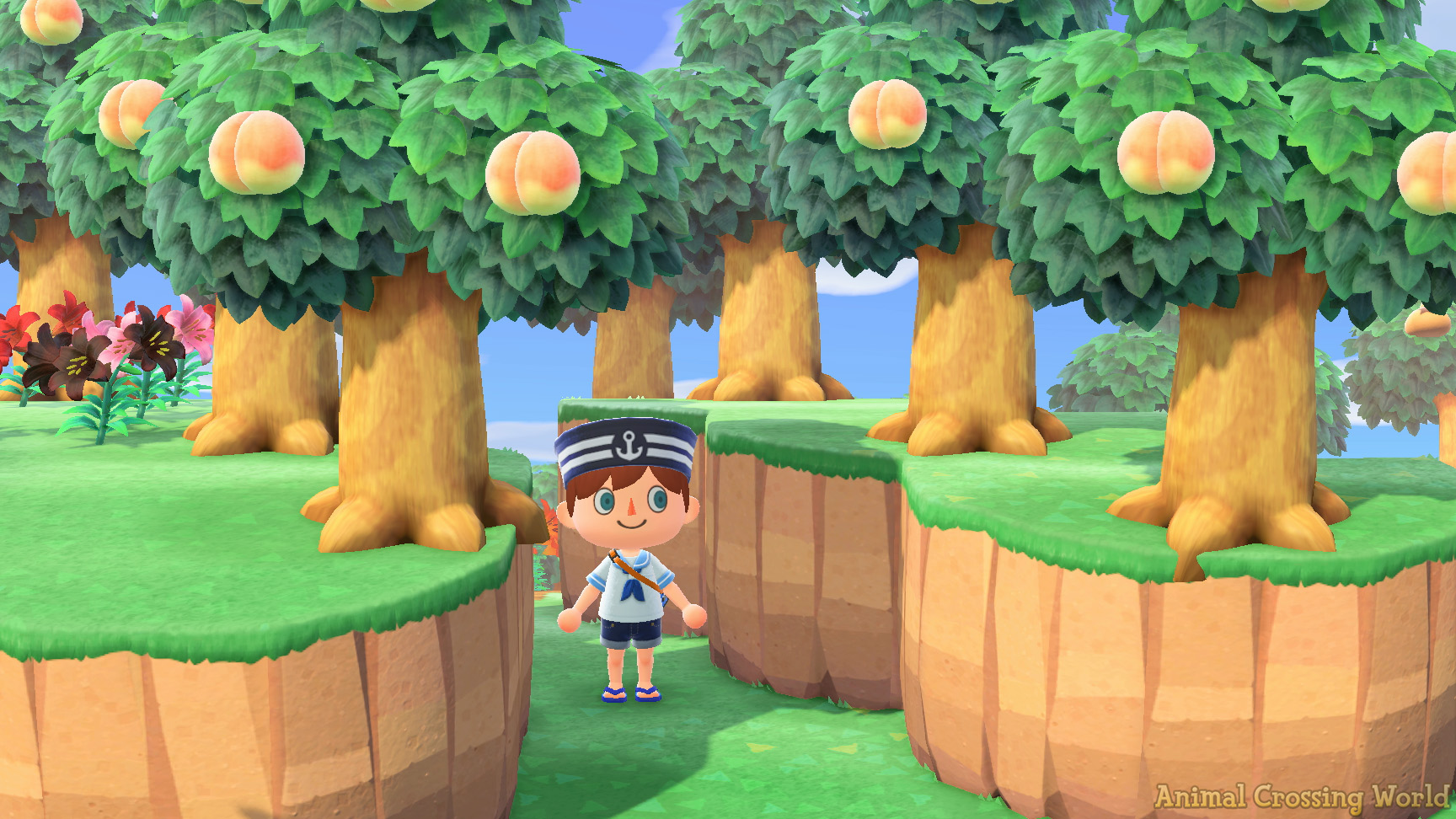 Plant Trees On Cliff Edges In Animal Crossing: New ...