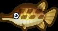 Animal Crossing: New Horizons Gar Fish