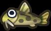 Animal Crossing: New Horizons Loach Fish