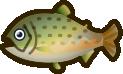 Animal Crossing: New Horizons Stringfish Fish