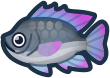Animal Crossing: New Horizons Tilapia Fish