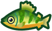 Animal Crossing: New Horizons Yellow Perch Fish
