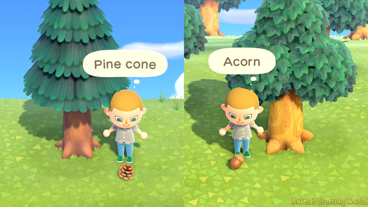 Acorn Pine Cone Diy Crafting Recipes How To Find Get Them In Animal Crossing New Horizons Acnh Guides Animal Crossing World